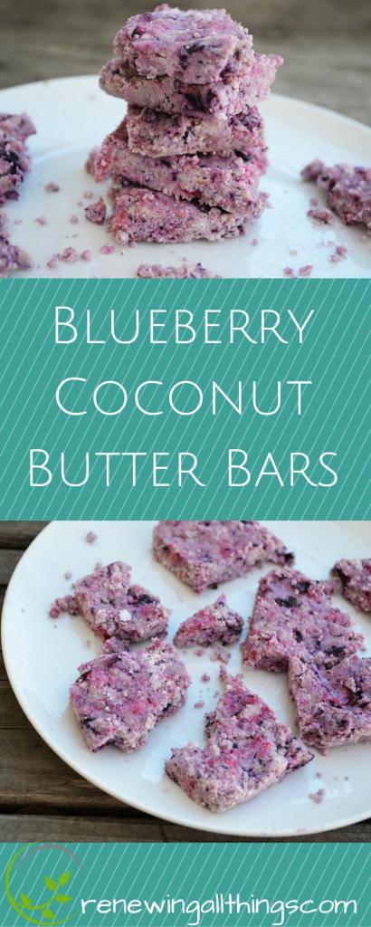 Blueberry Coconut Butter Bars