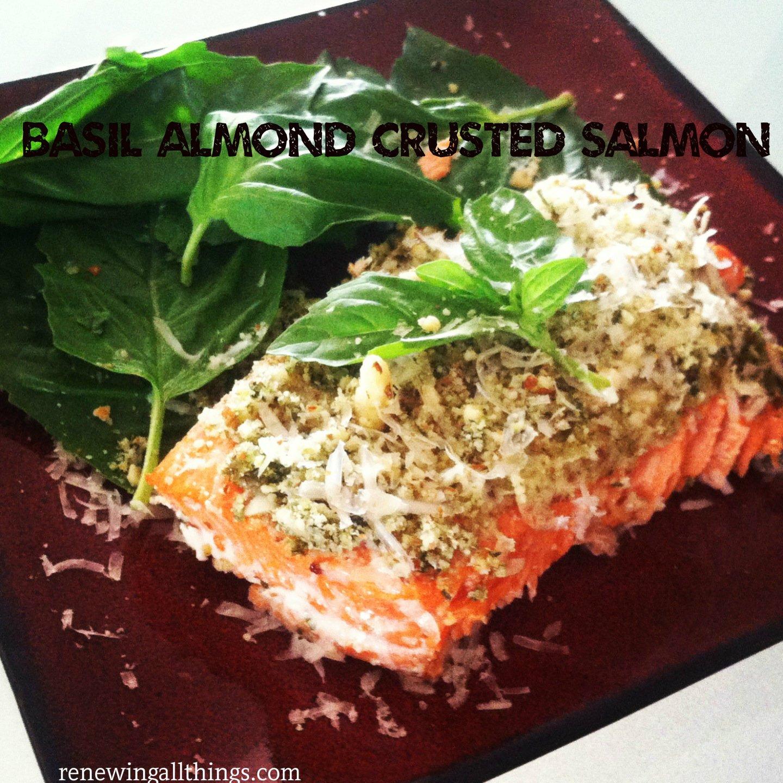 basal-almon-salmon2