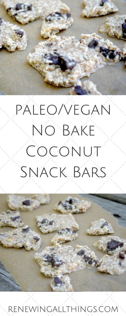 coconut snack bars
